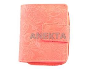 Anekta  D43